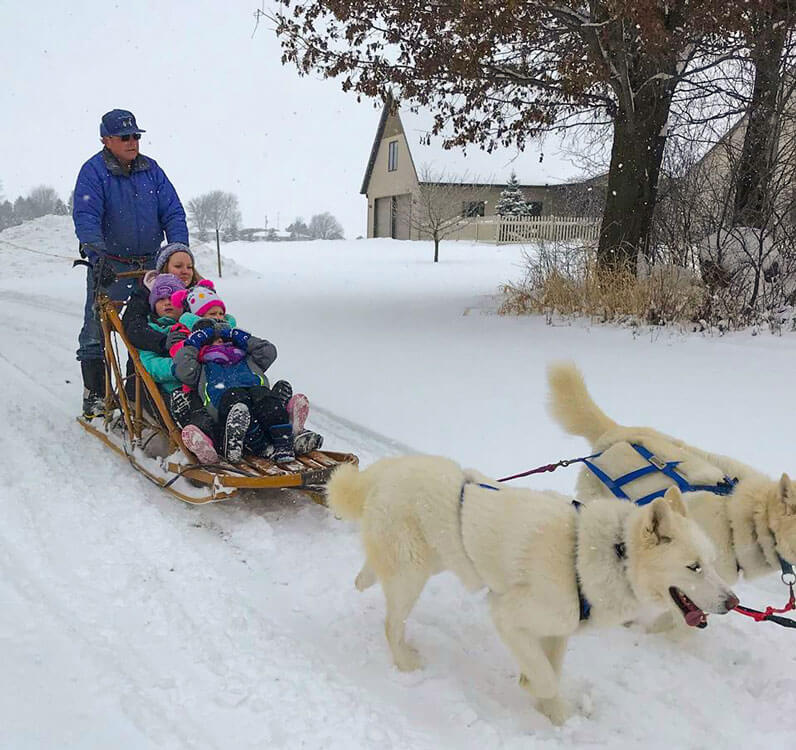 Students and their teacher experiencing a dog sled